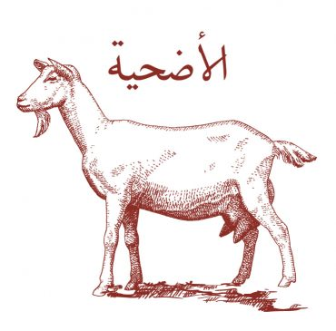 Udhiyyat Goat